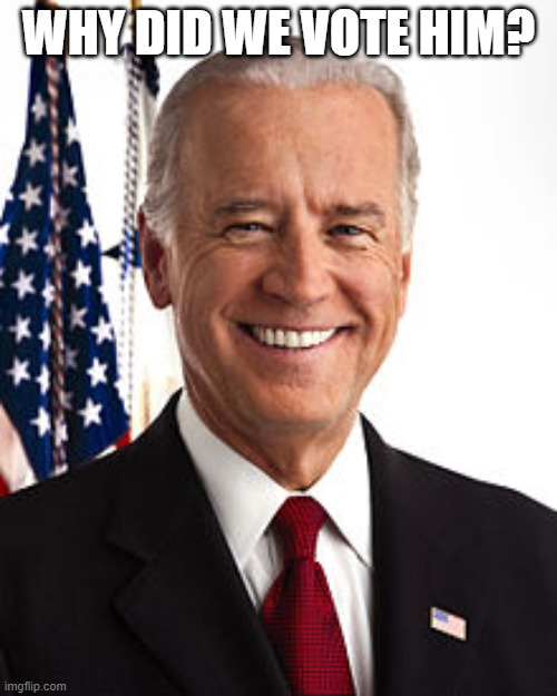 Joe Biden Meme |  WHY DID WE VOTE HIM? | image tagged in memes,joe biden | made w/ Imgflip meme maker