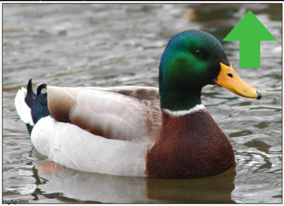 Actual Advice Mallard Meme | image tagged in memes,actual advice mallard | made w/ Imgflip meme maker