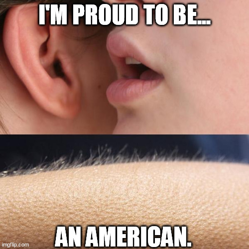 Whisper and Goosebumps |  I'M PROUD TO BE... AN AMERICAN. | image tagged in whisper and goosebumps | made w/ Imgflip meme maker