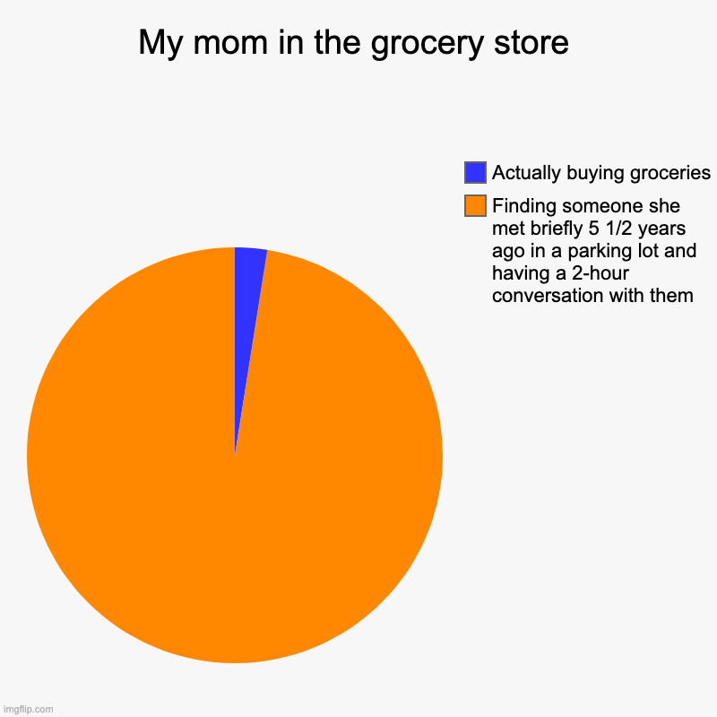 This is why she takes so long XD | My mom in the grocery store | Finding someone she met briefly 5 1/2 years ago in a parking lot and having a 2-hour conversation with them, A | image tagged in charts,pie charts | made w/ Imgflip chart maker