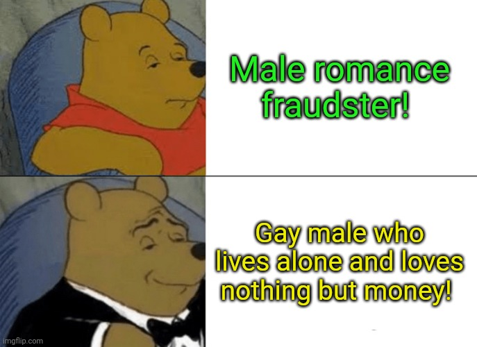Romance fraudster! |  Male romance fraudster! Gay male who lives alone and loves nothing but money! | image tagged in memes,tuxedo winnie the pooh,fraudster,scammer,romance | made w/ Imgflip meme maker