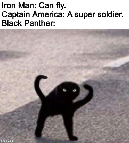 Hi |  Iron Man: Can fly. Captain America: A super soldier. Black Panther: | image tagged in superheroes,black panther,iron man,captain america | made w/ Imgflip meme maker
