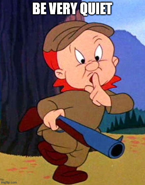 Elmer Fudd | BE VERY QUIET | image tagged in elmer fudd | made w/ Imgflip meme maker