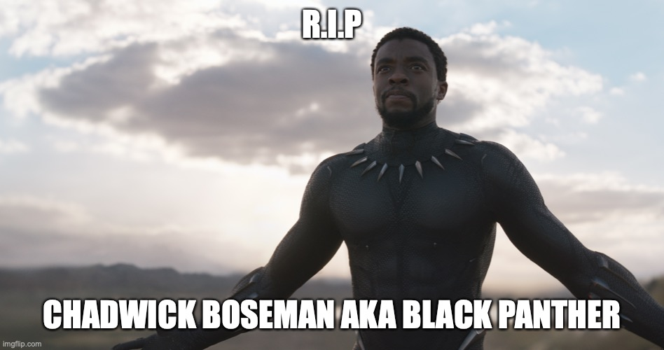 Black Panther Spotlight | R.I.P CHADWICK BOSEMAN AKA BLACK PANTHER | image tagged in black panther spotlight | made w/ Imgflip meme maker