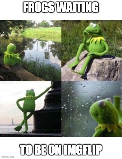 FROGS WAITING TO BE ON IMGFLIP | image tagged in blank kermit waiting | made w/ Imgflip meme maker