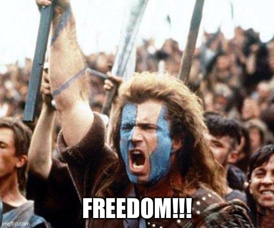braveheart freedom | FREEDOM!!! | image tagged in braveheart freedom | made w/ Imgflip meme maker