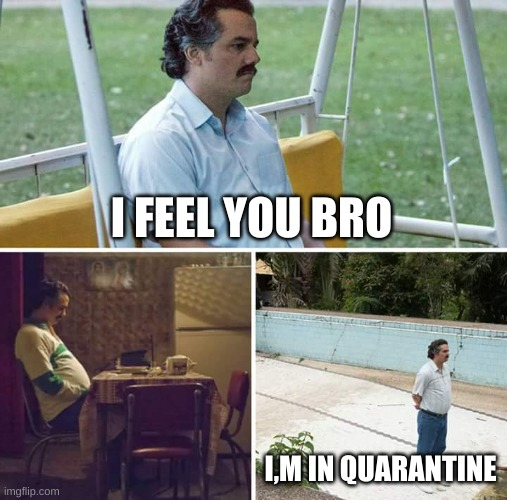 Sad Pablo Escobar Meme | I FEEL YOU BRO I,M IN QUARANTINE | image tagged in memes,sad pablo escobar | made w/ Imgflip meme maker