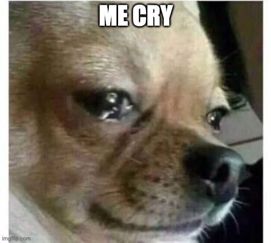 ME CRY | image tagged in crying dog | made w/ Imgflip meme maker