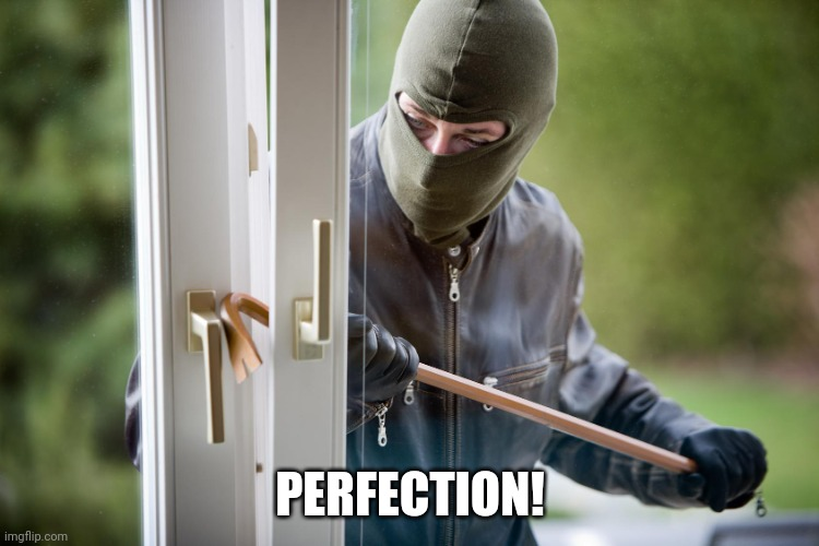 PERFECTION! | image tagged in burglar | made w/ Imgflip meme maker