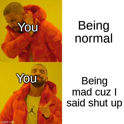 Being normal Being mad cuz I said shut up You You | image tagged in memes,drake hotline bling | made w/ Imgflip meme maker