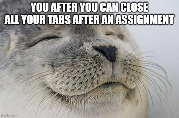 Satisfied Seal |  YOU AFTER YOU CAN CLOSE ALL YOUR TABS AFTER AN ASSIGNMENT | image tagged in memes,satisfied seal | made w/ Imgflip meme maker