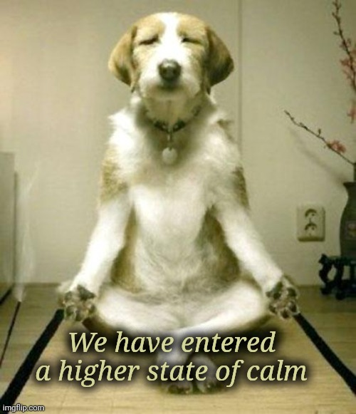 Inner Peace Dog | We have entered a higher state of calm | image tagged in inner peace dog | made w/ Imgflip meme maker