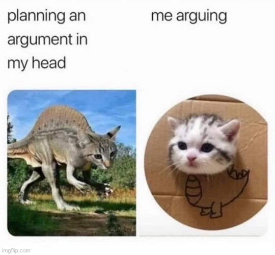 repost lol | image tagged in planning an argument in my head,repost,arguments,argument,cats,funny meme | made w/ Imgflip meme maker