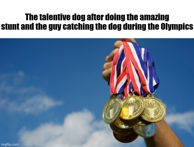 Talentive dog | The talentive dog after doing the amazing stunt and the guy catching the dog during the Olympics | image tagged in gold medals,memes,comments,comment,comment section,dog | made w/ Imgflip meme maker