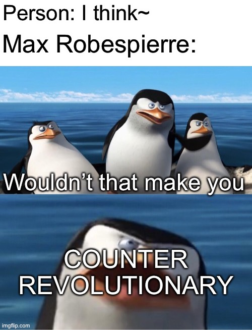 Wouldn't that make you |  Person: I think~; Max Robespierre:; COUNTER REVOLUTIONARY | image tagged in wouldn t that make you,history memes,memes,french revolution,robespierre,to the guillotine | made w/ Imgflip meme maker