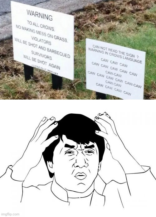 Crows can't understand this... | image tagged in jackie chan wtf,funny,crows,animals | made w/ Imgflip meme maker