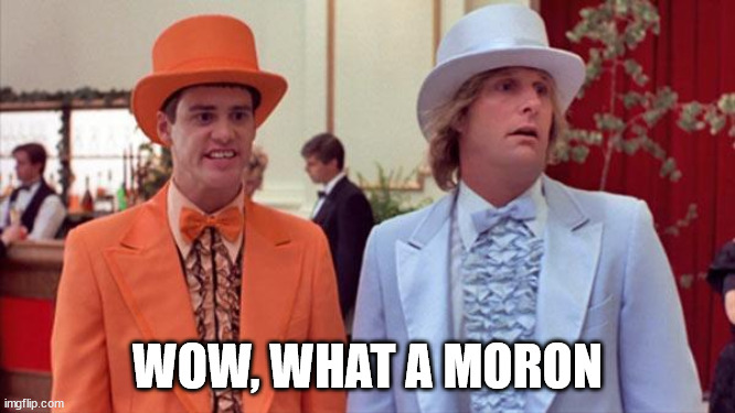 dumb and dumber | WOW, WHAT A MORON | image tagged in dumb and dumber | made w/ Imgflip meme maker
