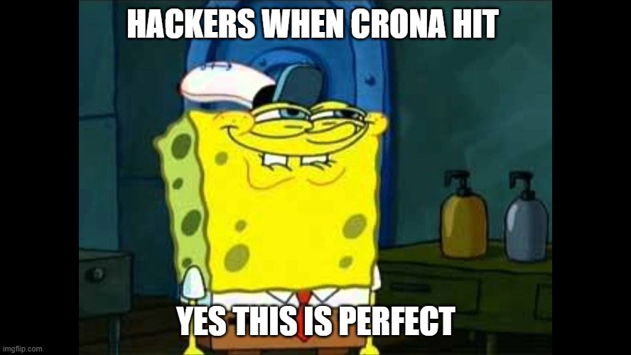 hacker bruver |  HACKERS WHEN CRONA HIT; YES THIS IS PERFECT | image tagged in life hack,hacks | made w/ Imgflip meme maker