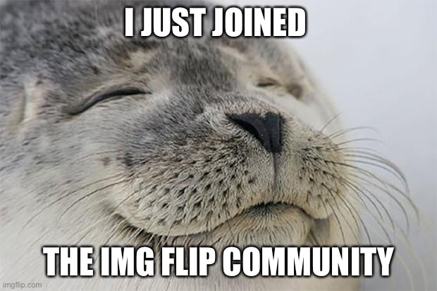 Hi |  I JUST JOINED; THE IMG FLIP COMMUNITY | image tagged in memes,satisfied seal | made w/ Imgflip meme maker