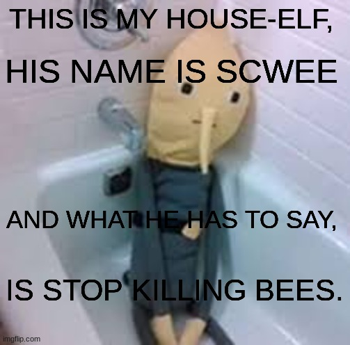 Scwee the house elf |  HIS NAME IS SCWEE; THIS IS MY HOUSE-ELF, AND WHAT HE HAS TO SAY, IS STOP KILLING BEES. | image tagged in scwee,scwee the house elf,scwee says,ask scwee,stop killing bees,bees | made w/ Imgflip meme maker