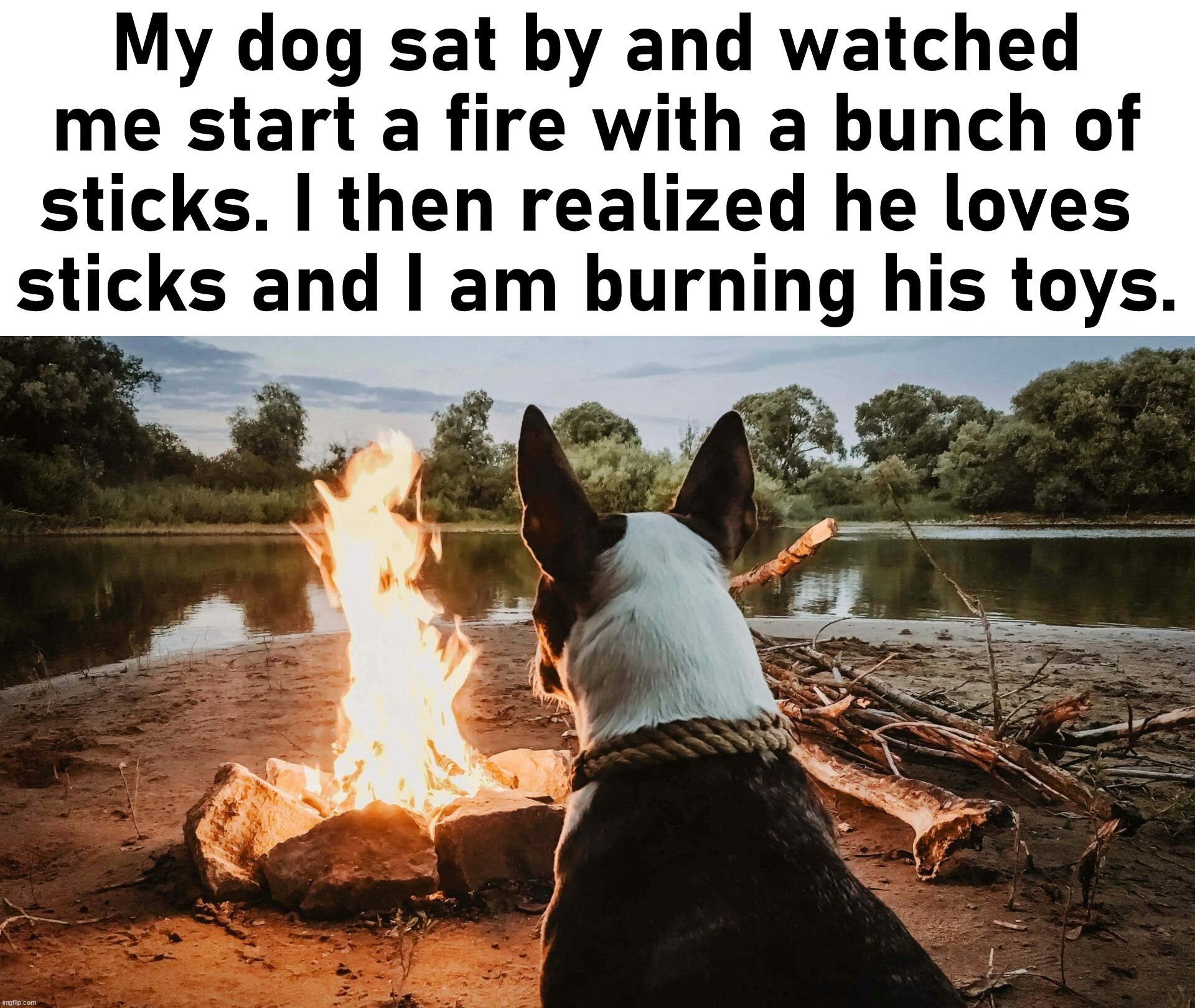 Hope he doesn't think I am punishing him. |  My dog sat by and watched me start a fire with a bunch of sticks. I then realized he loves  sticks and I am burning his toys. | image tagged in dogs,pooh sticks,fire | made w/ Imgflip meme maker