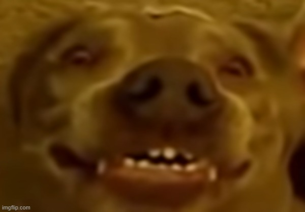 Satan Doggo | image tagged in satan doggo | made w/ Imgflip meme maker