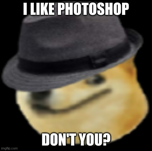 I love photoshop |  I LIKE PHOTOSHOP; DON'T YOU? | image tagged in fedora doge,doge,memes,fedora | made w/ Imgflip meme maker