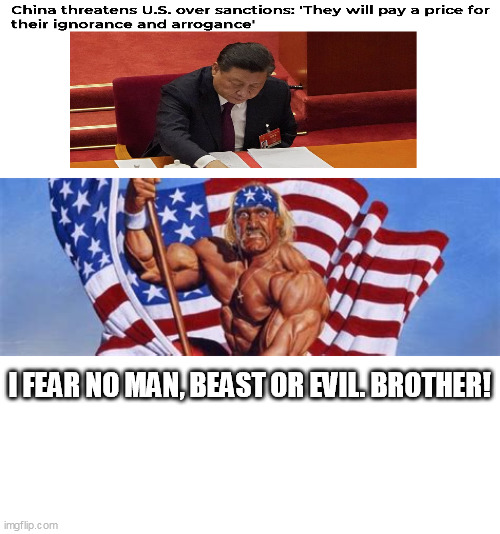 No fear!!! |  I FEAR NO MAN, BEAST OR EVIL. BROTHER! | image tagged in patriotic hulk hogan,china | made w/ Imgflip meme maker