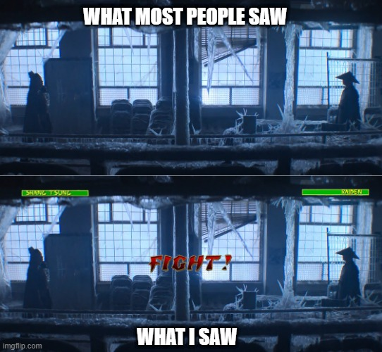 That one scene in Mortal Kombat |  WHAT MOST PEOPLE SAW; WHAT I SAW | image tagged in mortal kombat,raiden,shang tsung,movies,funny,video game | made w/ Imgflip meme maker