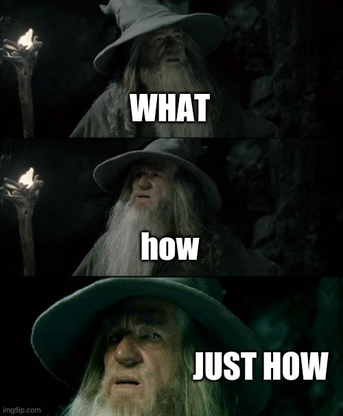 Confused Gandalf Meme | WHAT how JUST HOW | image tagged in memes,confused gandalf | made w/ Imgflip meme maker