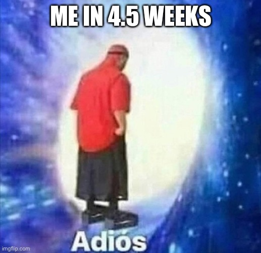 ME IN 4.5 WEEKS | image tagged in adios | made w/ Imgflip meme maker