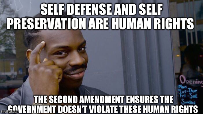 Roll Safe Think About It Meme | SELF DEFENSE AND SELF PRESERVATION ARE HUMAN RIGHTS THE SECOND AMENDMENT ENSURES THE GOVERNMENT DOESN'T VIOLATE THESE HUMAN RIGHTS | image tagged in memes,roll safe think about it | made w/ Imgflip meme maker
