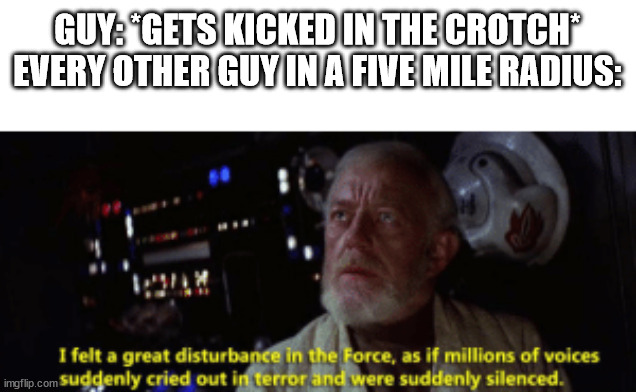 GUY: *GETS KICKED IN THE CROTCH* EVERY OTHER GUY IN A FIVE MILE RADIUS: | image tagged in obi wan kenobi | made w/ Imgflip meme maker