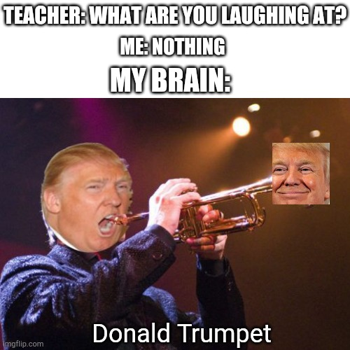 The guy who plays trumpet |  TEACHER: WHAT ARE YOU LAUGHING AT? ME: NOTHING; MY BRAIN:; Donald Trumpet | image tagged in funny,memes,donald trump,blank white template | made w/ Imgflip meme maker