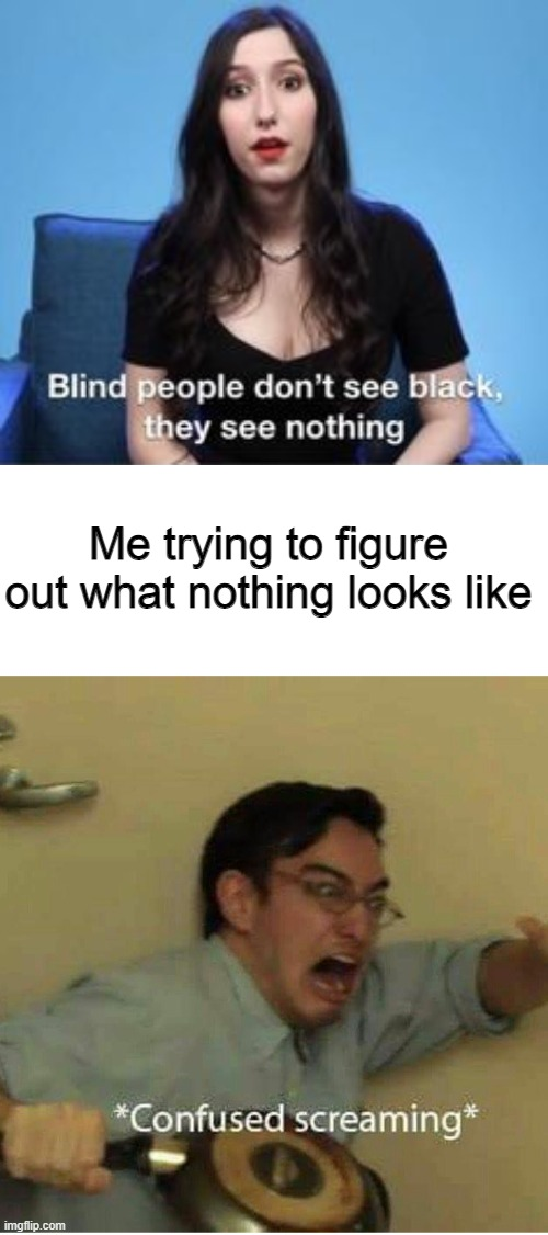Okay, WHAT DOES NOTHING LOOK LIKE!!!!!!!!!!!!!! |  Me trying to figure out what nothing looks like | image tagged in confused screaming | made w/ Imgflip meme maker