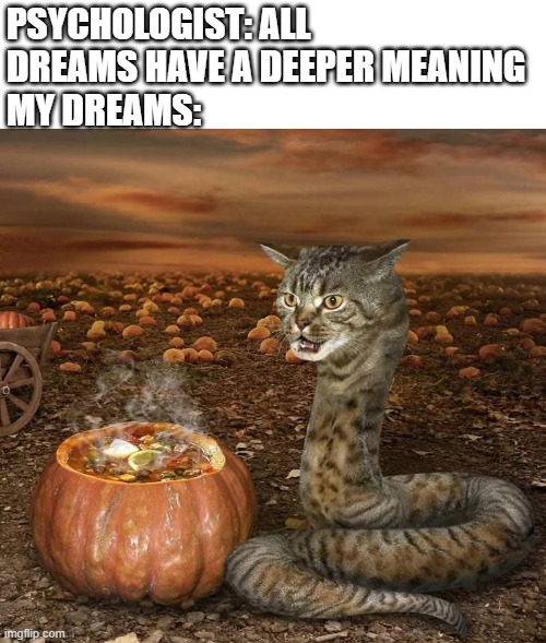 What would you name this animal? |  PSYCHOLOGIST: ALL DREAMS HAVE A DEEPER MEANING MY DREAMS: | image tagged in funny,dreams,wierd,cats,the internet,snake | made w/ Imgflip meme maker