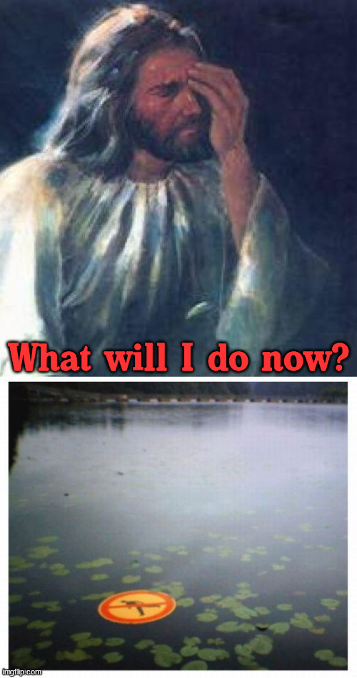 WWJD ... ignore the sign? |  What will I do now? | image tagged in jesus facepalm,walk of shame,water | made w/ Imgflip meme maker