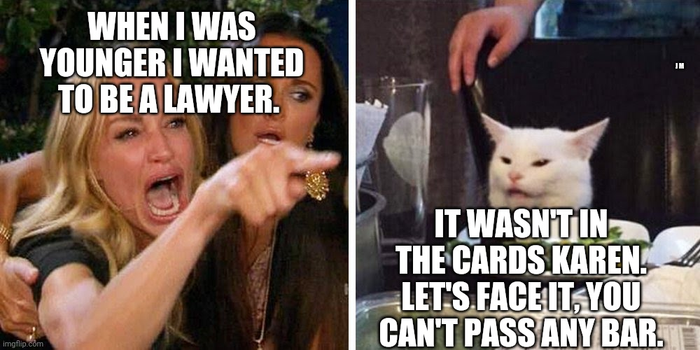 Smudge the cat |  WHEN I WAS YOUNGER I WANTED TO BE A LAWYER. J M; IT WASN'T IN THE CARDS KAREN. LET'S FACE IT, YOU CAN'T PASS ANY BAR. | image tagged in smudge the cat | made w/ Imgflip meme maker