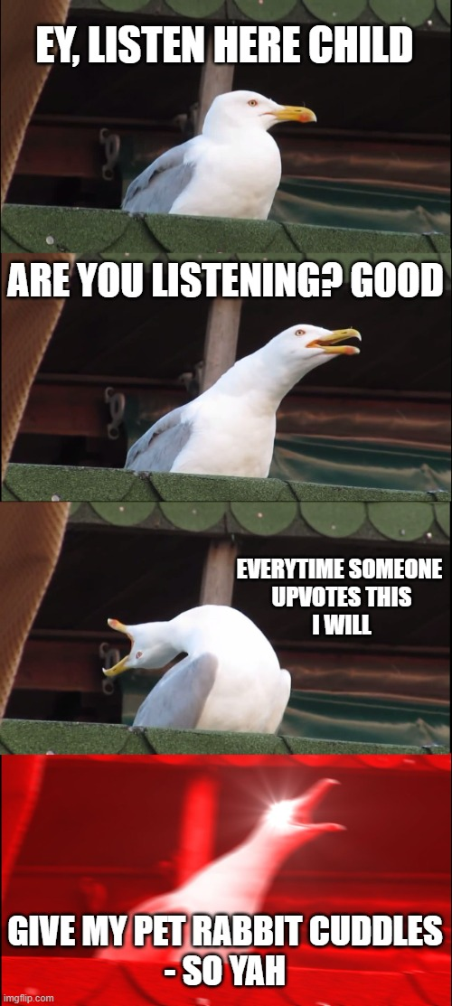 seriously people I'm running outta ideas -_- |  EY, LISTEN HERE CHILD; ARE YOU LISTENING? GOOD; EVERYTIME SOMEONE  UPVOTES THIS I WILL; GIVE MY PET RABBIT CUDDLES - SO YAH | image tagged in memes,inhaling seagull | made w/ Imgflip meme maker