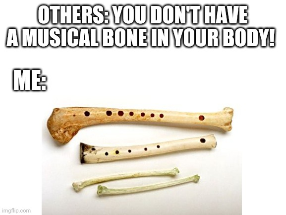 Bone flutes... |  OTHERS: YOU DON'T HAVE A MUSICAL BONE IN YOUR BODY! ME: | image tagged in memes,music,skeleton | made w/ Imgflip meme maker