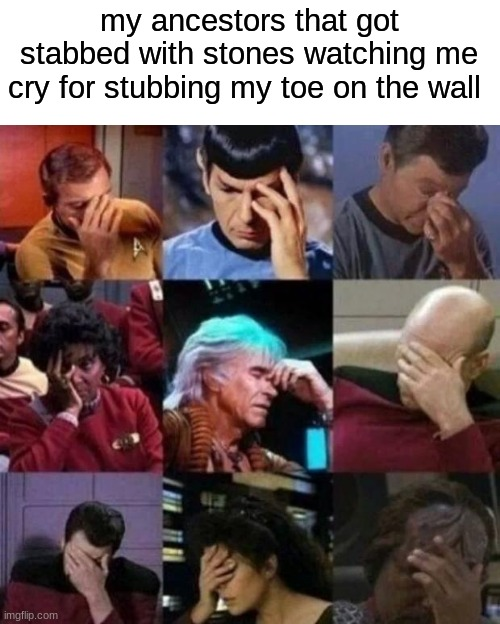 star trek face palm |  my ancestors that got stabbed with stones watching me cry for stubbing my toe on the wall | image tagged in star trek face palm | made w/ Imgflip meme maker