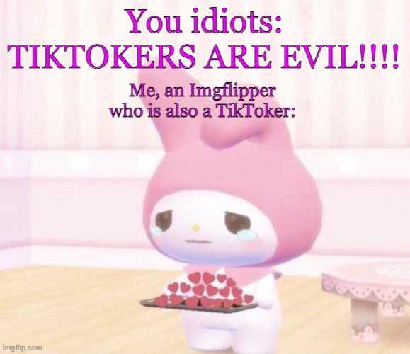 Wholesome Crying | You idiots: TIKTOKERS ARE EVIL!!!! Me, an Imgflipper who is also a TikToker: | image tagged in wholesome crying | made w/ Imgflip meme maker