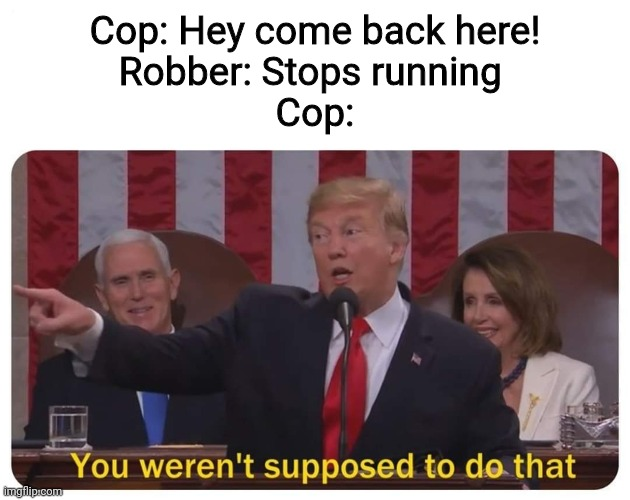 everytime |  Cop: Hey come back here! Robber: Stops running  Cop: | image tagged in you weren't supposed to do that | made w/ Imgflip meme maker