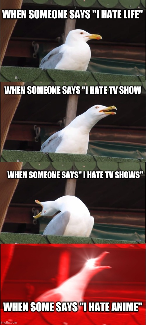 "Inhaling Seagull Meme |  WHEN SOMEONE SAYS ""I HATE LIFE""; WHEN SOMEONE SAYS ""I HATE TV SHOW; WHEN SOMEONE SAYS"" I HATE TV SHOWS""; WHEN SOME SAYS ""I HATE ANIME"" 