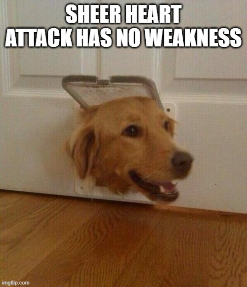 sheer heart attack no weakness |  SHEER HEART ATTACK HAS NO WEAKNESS | image tagged in dog door,memes,funny,jojo meme | made w/ Imgflip meme maker