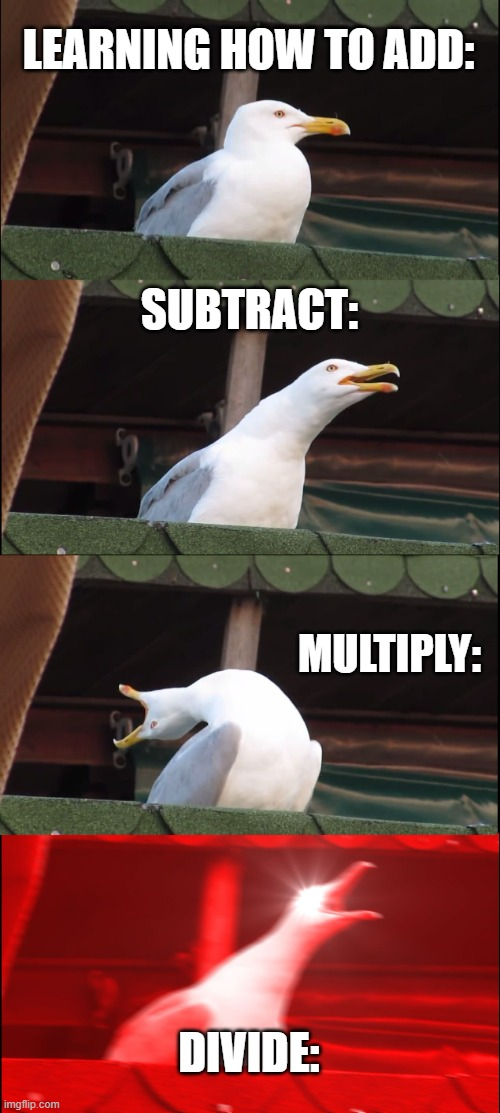 Inhaling Seagull Meme |  LEARNING HOW TO ADD:; SUBTRACT:; MULTIPLY:; DIVIDE: | image tagged in memes,inhaling seagull | made w/ Imgflip meme maker