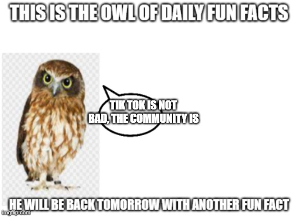 the owl of fun facts |  TIK TOK IS NOT BAD, THE COMMUNITY IS | image tagged in the owl of fun facts | made w/ Imgflip meme maker
