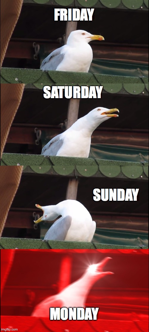 mondays tho |  FRIDAY; SATURDAY; SUNDAY; MONDAY | image tagged in memes,inhaling seagull | made w/ Imgflip meme maker