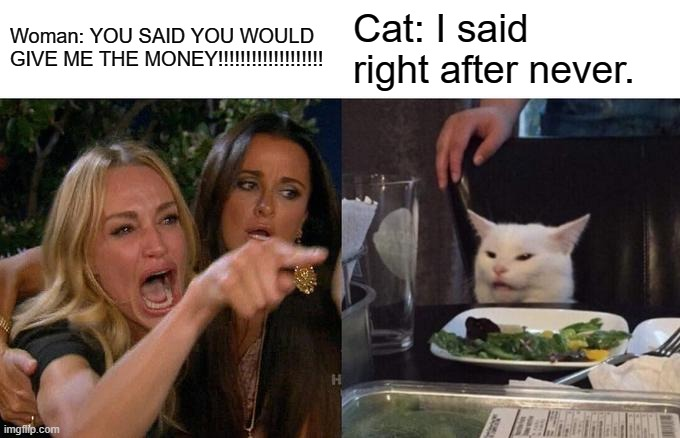 Smort Kitten |  Woman: YOU SAID YOU WOULD GIVE ME THE MONEY!!!!!!!!!!!!!!!!!!! Cat: I said right after never. | image tagged in memes,woman yelling at cat | made w/ Imgflip meme maker