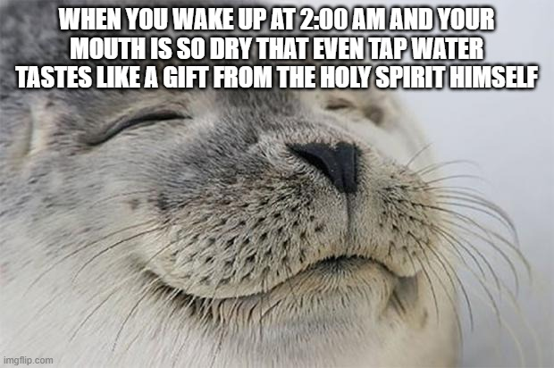this is inspired from many, many personal experiences. |  WHEN YOU WAKE UP AT 2:00 AM AND YOUR MOUTH IS SO DRY THAT EVEN TAP WATER TASTES LIKE A GIFT FROM THE HOLY SPIRIT HIMSELF | image tagged in memes,satisfied seal | made w/ Imgflip meme maker